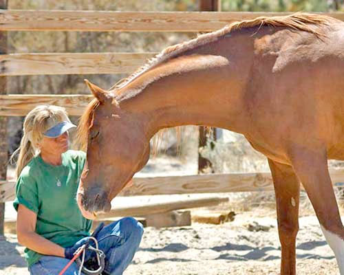 Indie-Star-Bonnie-Duecker-CE, photo of a woman and a horse
